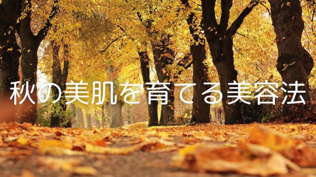 秋の美肌を育てる美容法