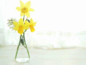 ガラス花瓶はシンプルに映える